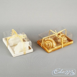 Shells - set of 2 - decorative candle - mix
