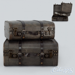 Set of 2 decorative XL chests